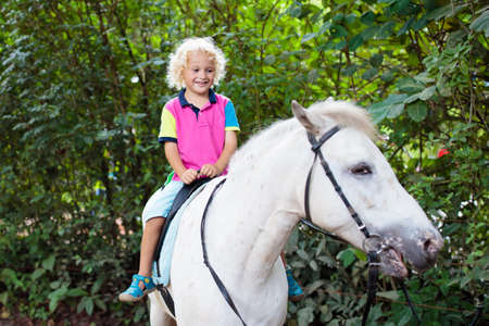 Little boy riding horse on summer vacation in country ranch. Kids learn to ride horses. Children and animals friendship. Little child on white pony. Kid playing cowboy. Young jockey. Imagens