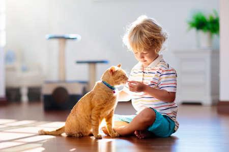 Bambino che gioca con il gatto a casa. Bambini e animali domestici. Ragazzino che nutre e accarezza un simpatico gatto color zenzero. Gatti albero e scratcher nell'interno del soggiorno. I bambini giocano e danno da mangiare ai gattini. Animali domestici.