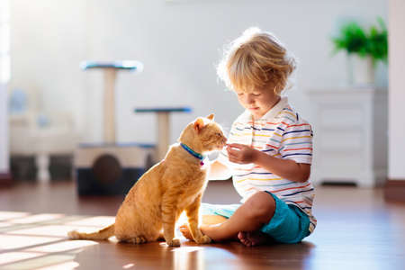 Child playing with cat at home. Kids and pets. Little boy feeding and petting cute ginger color cat. Cats tree and scratcher in living room interior. Children play and feed kitten. Home animals. Foto de archivo - 123791977