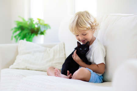 Child playing with baby cat. Kid holding black kitten. Little boy snuggling cute pet animal sitting on white couch in sunny living room at home. Kids play with pets. Children and domestic animals.