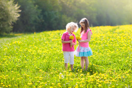 Kids play in yellow dandelion field. Child picking summer flowers. Little girl and boy run in spring dandelions meadow. Children play outdoor. Kid in blooming park. Nature and outdoors fun for family.