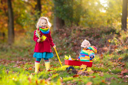 Kids play in autumn park. Child picking yellow maple leaves in sunny forest. Little girl with wheelbarrow walking in the woods. Fall weather activity. Children playing in rain. Kid with golden leaf. Stok Fotoğraf