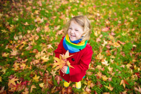 Little girl with yellow leaf. Child playing with autumn golden leaves. Kids play outdoors in the park. Children hiking in fall forest. Toddler kid under a maple tree on a sunny October day. Reklamní fotografie
