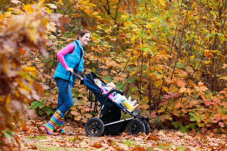 Family hiking with stroller in autumn park. Active mother, baby and toddler in twin double pushchair. Fit healthy mom walking with jogger pram and kids. Outdoor activity in fall with young children. Reklamní fotografie