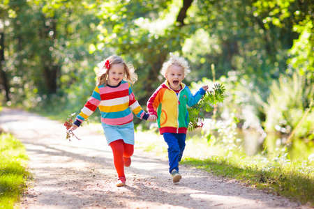 Children hiking in forest and mountains. Kids play outdoor in summer. Little boy and girl on hike trail in national park. Outdoor fun and healthy activity.