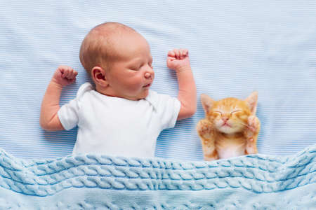 Baby sleeping with kitten on blue knitted blanket. Child and cat. Kids and pets. Newborn kid with his animal. Little infant with pet. Children play with animals. Boy and kitty sleep. Stock Photo