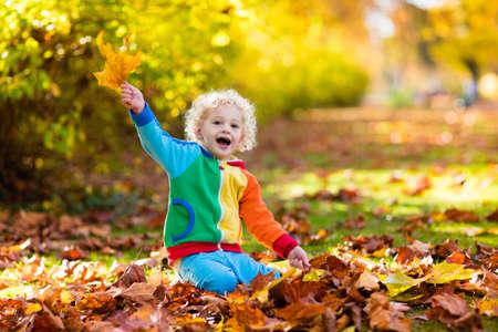 아이들은 가을 공원에서 놀고 있습니다. 노란색과 빨간색 잎을 던지는 아이들. 오크와 단풍나무 잎을 가진 어린 소년입니다. 단풍. 가을에 가족 야외 놀이. 가을에 유아 아이 또는 미취학 아동.