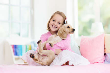 Child playing with baby dog. Kids play with puppy. Little girl and American cocker spaniel on bed at home. Children and pets at home. Kid taking nap with pet. Animal care. Banco de Imagens - 129423549