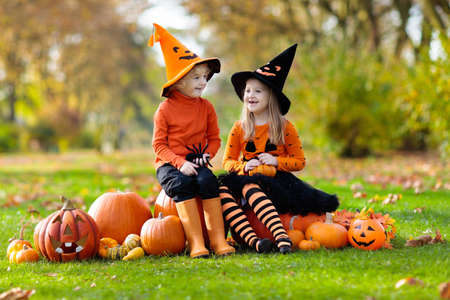 Kids trick or treat on Halloween. Children in black and orange witch costume and hat play with pumpkin and spider in autumn park. Dressed up boy and girl outdoor. Family fun in fall.