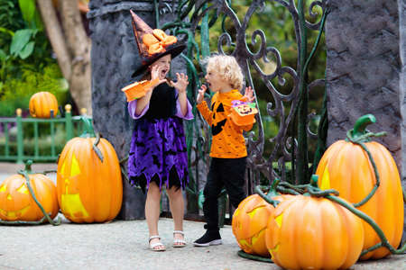Child in Halloween costume. Kids trick or treat. Little boy and girl dressed as witch with hat holding pumpkin lantern and candy bucket. Family celebration. Stok Fotoğraf