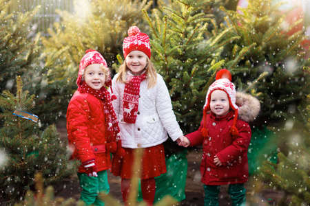 Family selecting Christmas tree. Kids choosing freshly cut Norway Xmas tree at outdoor lot. Children buying gifts at winter fair. Boy and girl shopping for Christmas decoration at market. Holiday time Banque d'images