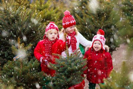 Familie, die Weihnachtsbaum auswählt. Kinder, die sich für frisch geschnittenen Norwegen-Weihnachtsbaum im Freien entscheiden. Kinder kaufen Geschenke auf der Wintermesse. Jungen und Mädchen, die auf dem Markt für Weihnachtsdekoration einkaufen. Ferienzeit