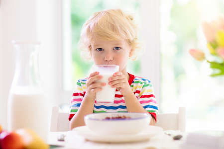 Child having breakfast. Kid drinking milk and eating cereal with fruit. Little boy at white dining table in kitchen at window. Kids eat on sunny morning. Healthy balanced nutrition for young kids. Archivio Fotografico