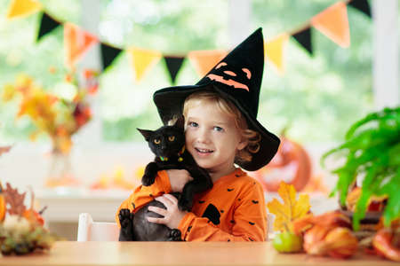 Child in Halloween costume. Kids trick or treat. Little boy and black cat with pumpkin lantern. Baby in witch hat and kitten. Autumn season holiday decoration. Home festive interior with fall leaves. Stock Photo