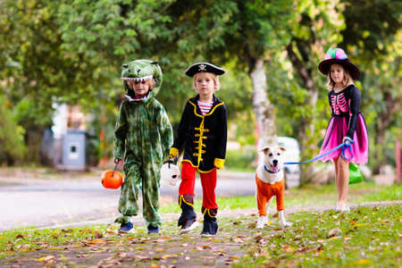 Kids trick or treat in Halloween costume. Children in colorful dress up with candy bucket on suburban street. Little boy and girl trick or treating with pumpkin lantern. Autumn holiday fun. Standard-Bild
