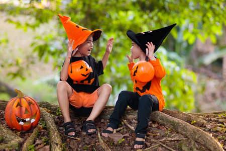 Children in black and orange witch costume and hat with pumpkin and spider in autumn park on Halloween. Asian kids trick or treat with candy bucket. Chinese boy dressed up. Brothers play.