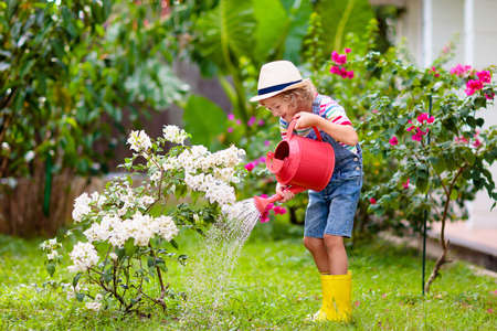 Child gardening. Little boy with red watering can in blooming sunny garden. Kids help in backyard. Summer outdoor fun. Kid taking care of plants and flowers.