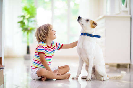 Child playing with baby dog. Kids play with puppy. Little boy and large dog at home. Children and friendship. Kid sitting on the floor with pet. Animal care.