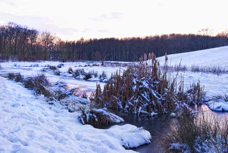 winterly: winterly natural landscape with small river at dawn