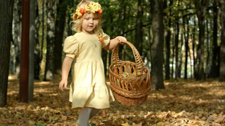 Cute girl with a basket full at the autumn park 写真素材