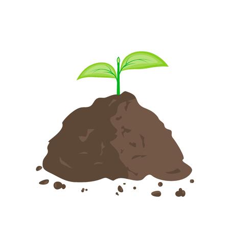 Sprout vert dans la pile de terre Banque d'images - 75060319