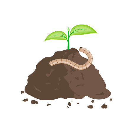 manure: Earthworm and Pile of Ground