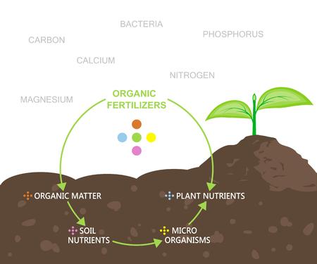 Diagram of Nutrients in Organic Fertilizers Illustration