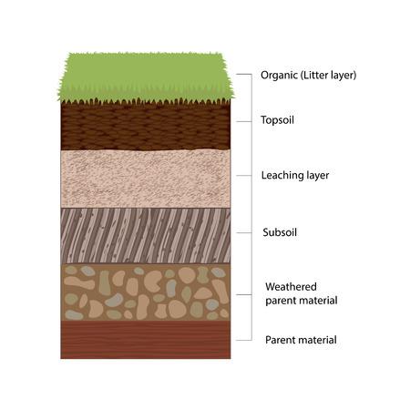 土壌層と層