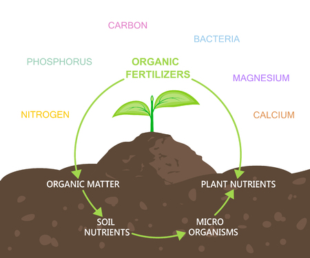 Diagram of Nutrients in Organic Fertilizers Illustration