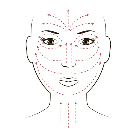 Facial Massage Lines for Applying Cream on Face