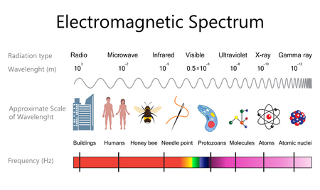 electromagnetic: Electromagnetic Spectrum Diagram Illustration