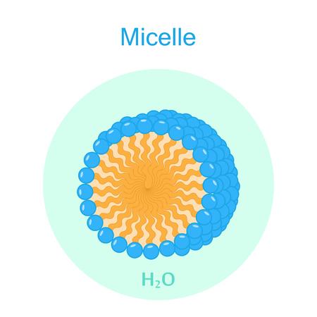 Micelle Color Icon