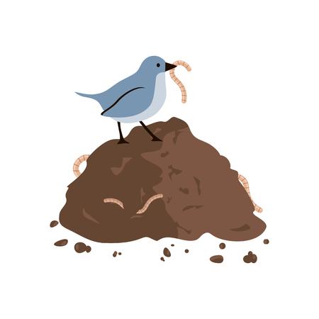 Bird eating worm.