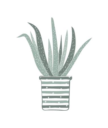 Scheda di pianta domestica in stile skandinavo Archivio Fotografico - 96129224