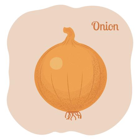 Yellow Onion Isolated