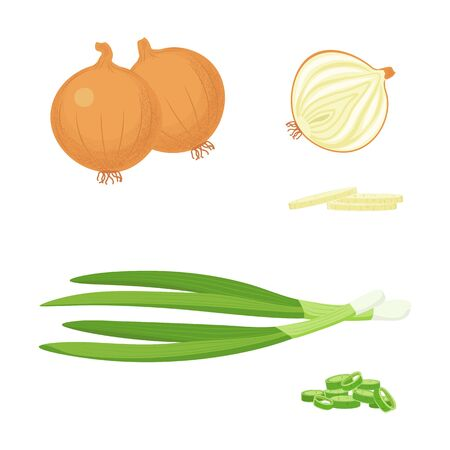 Yellow and Green Onions Set Ilustrace