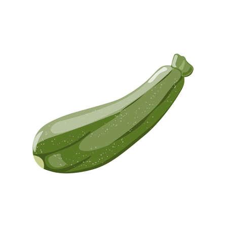 Fresh Green Zucchini Isolated on Background. Marrow Squash