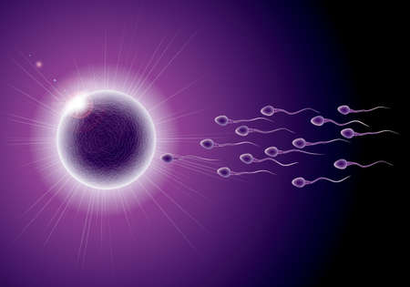 Fertilization process design, sperm and ovum combination, many sperm scramble ovum. Banque d'images - 102207373