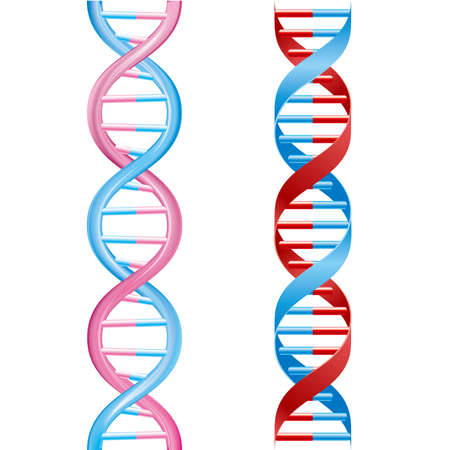 Medical concept design, DNA Strand, isolated on white background. Illustration