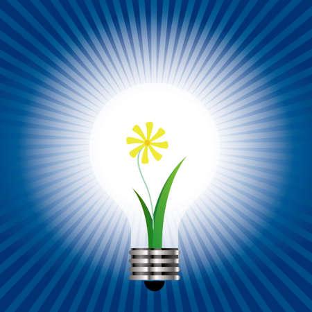 Plant idea, Spend in the light bulb.