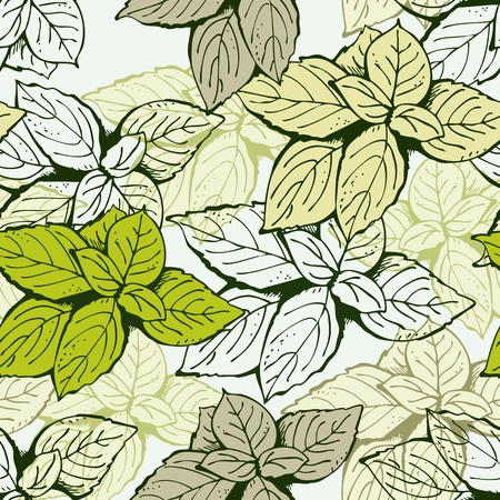 green leafs: Background from basil leafs green and beige vector