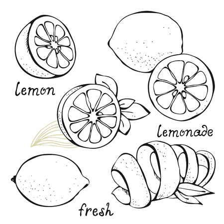 Lemon citrus ingesteld op wit wordt geïsoleerd