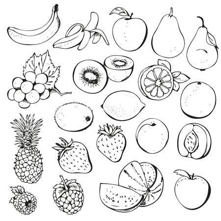 dessin au trait: Petits fruits ensemble isol� sur un fond blanc Illustration