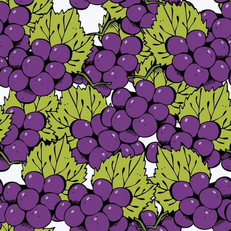 Vector seamless pattern with hand-drawn grape on a white Illustration