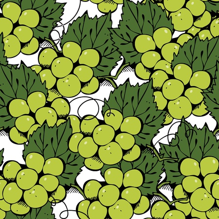 Vector seamless pattern with hand-drawn green grape Vector
