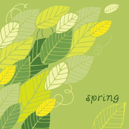 Vector illustration of spring green leafs with text Stock Vector - 12470074