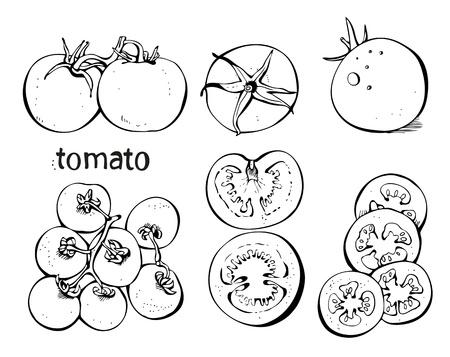 pomodoro: Collectoin di pomodori e fette su uno sfondo bianco