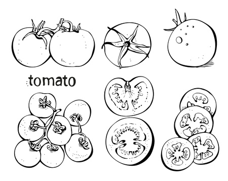 slice tomato: Collectoin of tomatoes and slices on a white background