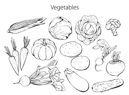 elote caricatura: Juego de verduras aislados en un fondo blanco Vectores