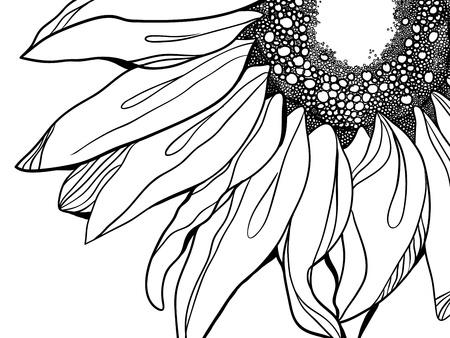 line in: Sunflower illustrazione Vettoriali